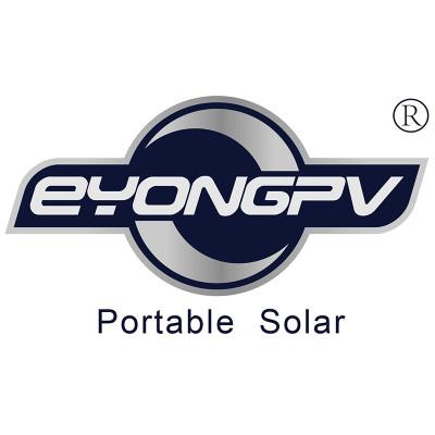 Eyongpv Limited