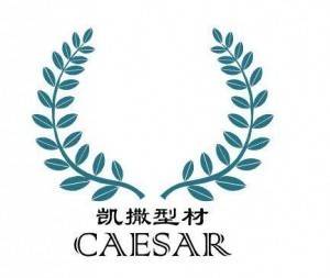 Jiangsu Caesar Profile Technology Co., Ltd.