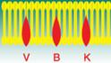 VBK Verwarmings BV