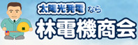Hayashi Denki Shoukai Company