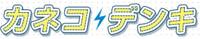 Kaneko Denki Co., Ltd.