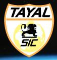 Jiangsu Tayal Photovoltaic Auxiliary Material Co., Ltd.