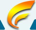BaoJi ChenFei Nonferrous Metals Co., Ltd.