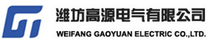 Weifang Gaoyuan Electric Co., Ltd.
