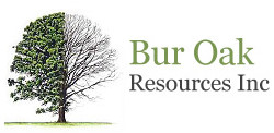 Bur Oak Resources Inc.