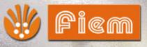 Fiem Industries Ltd.