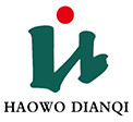 Shandong Haowo Electric Co., Ltd.