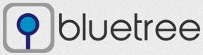Bluetree System Ltd.