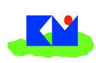 Ricoh Medical Inc
