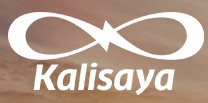 Kalisaya Ventures LLC