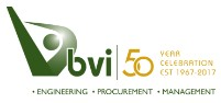 BVi Group