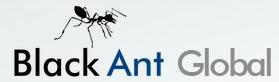 Black Ant Global