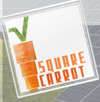 Square Carrot Consulting