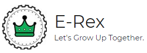 E Rex Mechatronics Pvt. Ltd.