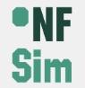 ARGE NFSim