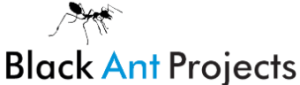 Black Ant Projects