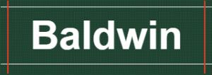 Baldwin Enterprises Ltd.