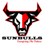 Sunbulls Future Energies Pvt. Ltd.