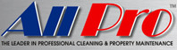 All Pro Window Cleaning Service