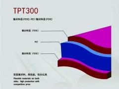 TPT300