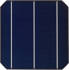 Mono - 156S