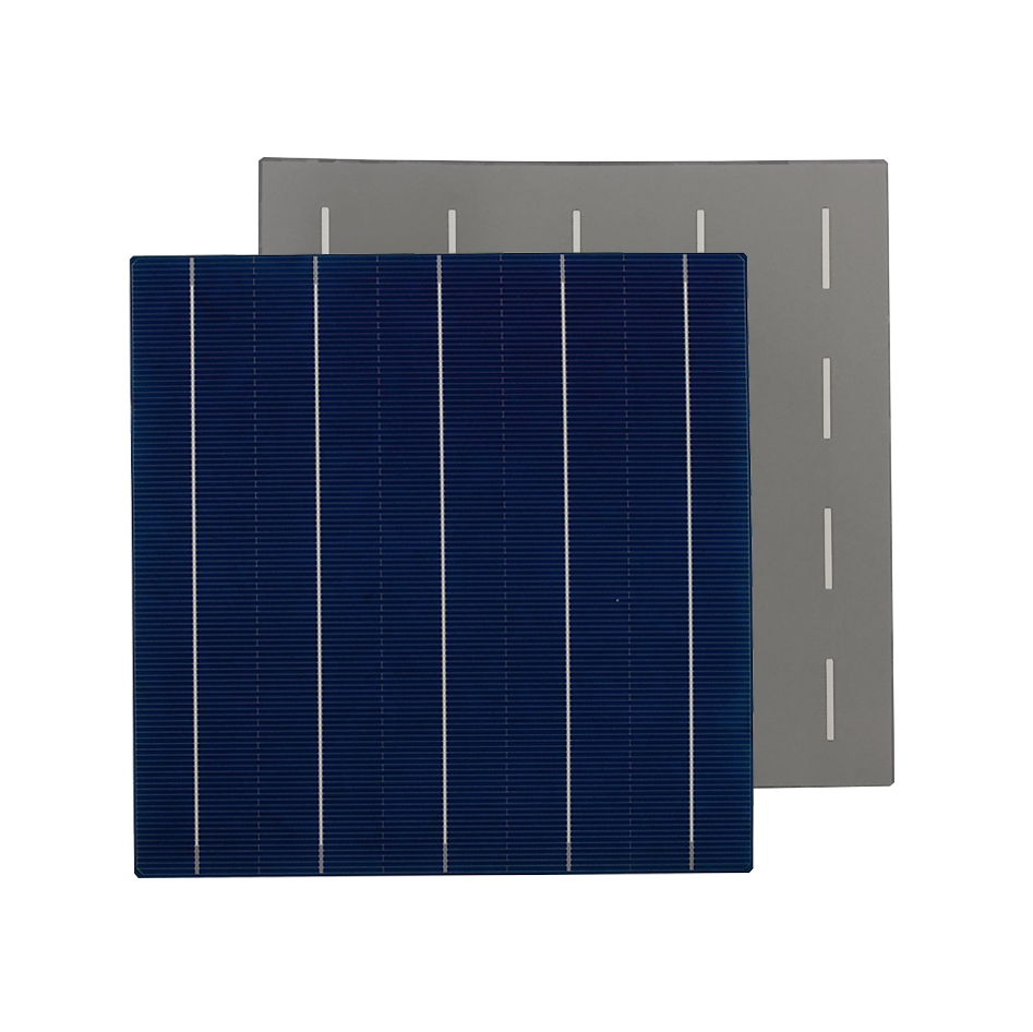 PERC Poly 5BB Solar Cell