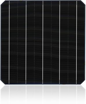 TSS65TN (3Pads)