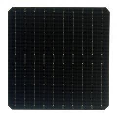 LWM10BB-PERC-182