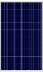 LN260P(250-265W Poly) 250~265