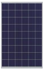 CHN 54P(P156) 230~245