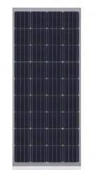 CHN 36M(M156) 155~165