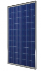 Polycrystalline photovoltaic modules 245 Wp 245