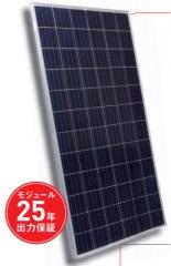 STP315 - 24/Vem 315