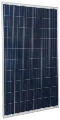 Trienergia COE-250-270P60L