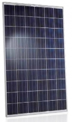 Trienergia COE-250-270P60Z