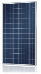 YS300-340P-72