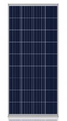 SUN 36P 155~160