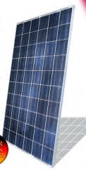 PM-72 SUNplatinum® 300-330 300~330