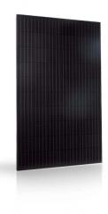 Trienergia TRI-300-320BC-BB