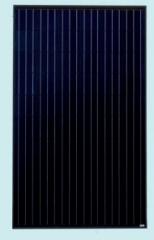 Solitek Standard M.60 -B-300