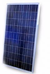 156x156 Poly Solar Panel