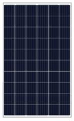 MS-P 270-295(60)