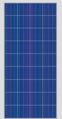 DS36100