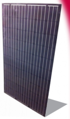 AS 200/60 Black Laminate 200~260