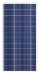 TS-S310P 310