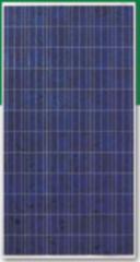 FY295-305-24/Vd