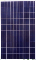 220W Solar Photovoltaic Panel