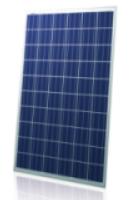 Poly-250-275W