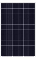 JY265~270P6-Kb-5 265~270
