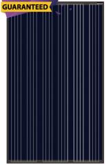 HS260-280P-30 Black
